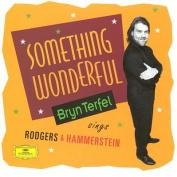 Bryn Terfel - Something Wonderful