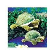 Plush Baby Turtle Puppet 25cm by Folkmanis - 2521FM