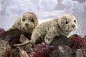 Harbour Seal Hand Puppet by Folkmanis - 2537