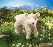 Lamb Hand Puppet by Folkmanis - 2864