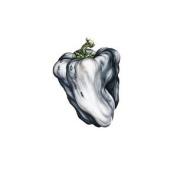White Pepper [Vinyl]