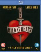 Wild at Heart [Region 1] [Blu-ray]