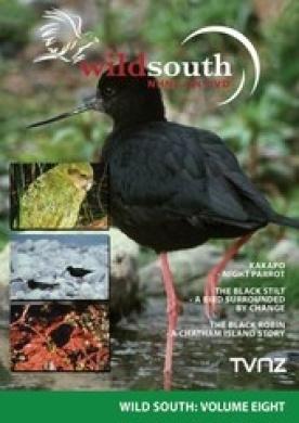 Wild South - Volume 8