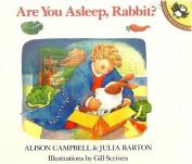 Are You Asleep Rabbit Diamond?