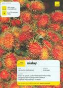 Teach Yourself Malay
