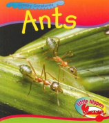 Ant (Little Nippers