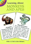 Learning About Monkeys and Apes