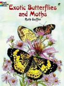 Exotic Butterflies and Moths CB