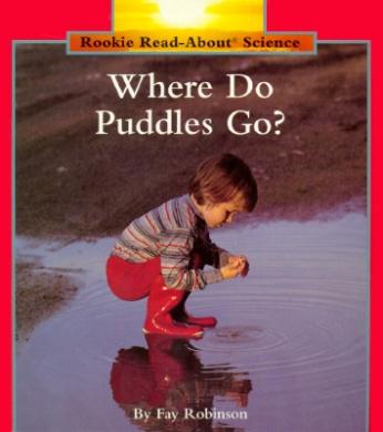 Where Do Puddles Go?