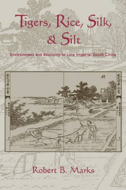 Tigers, Rice, Silk, and Silt: Environment and Economy in Late Imperial South China (Studies in Environment and History)