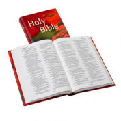NRSV Popular Text Edition NR530:T