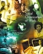 The Social Organization of Work 3rd Edition