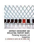 Antitrust Enforcement and Intellectual Property Rights