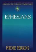 Abingdon New Testament Commentaries