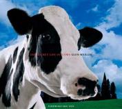 Secret Life of Cows