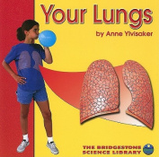 Your Lungs (Your Body)