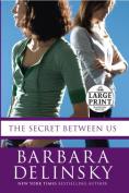 The Secret Between Us [Large Print]