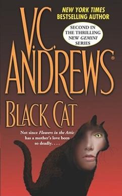 Black Cat Gemini: No. 2