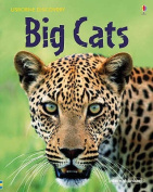 Big Cats (Discovery)