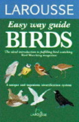Easy Way to Bird Recognition