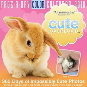 Cute Overload Calendar
