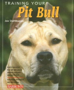 Training Your Pit Bull