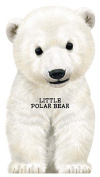 Little Polar Bear [Board book]
