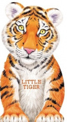 Little Tiger [Board book]