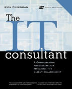 The It Consultant
