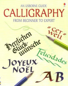 An Usborne Guide Calligraphy from Beginner to Expert