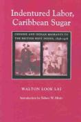 Indentured Labor, Caribbean Sugar