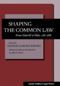 Shaping the Common Law
