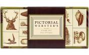 Pictorial Webster's Stamp Set