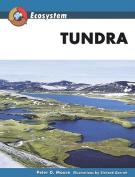 Tundra (Ecosystem)