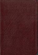 Biblia de Bolsillo-NIV [Spanish]
