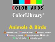 Animals & Birds (Colorlibrary)