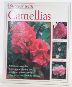 Success with Camellias