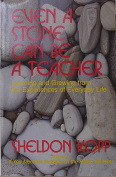 Even a Stone Can be a Teacher