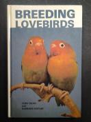 Breeding Lovebirds