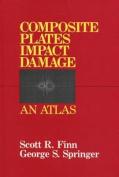 Composite Plates Impact Damage
