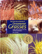 The Color Encyclopedia of Ornamental Grasses