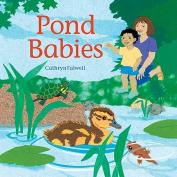 Pond Babies