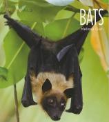Bats (Living Wild (Paperback))