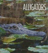 Alligators (Living Wild