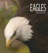 Eagles (Living Wild