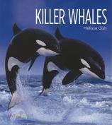 Killer Whales (Living Wild