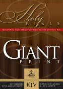 Giant Print Handy-Size Bible [Large Print]