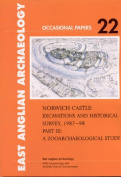 Norwich Castle: Excavations and Historical Survey 1987-1998