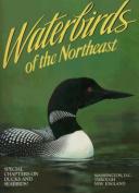 Waterbirds of the Northeast