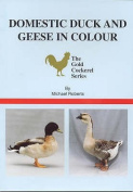 Domestic Duck and Geese in Colour